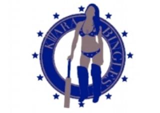 Bingles Logo Blue (002).jpg