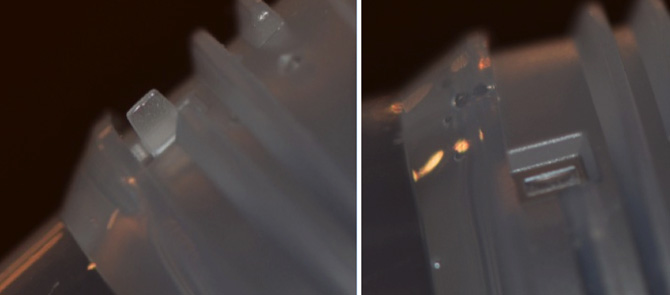 Figure 1.  Photographs of the bottle with the tab (left) and with tab missing after breakage (right).