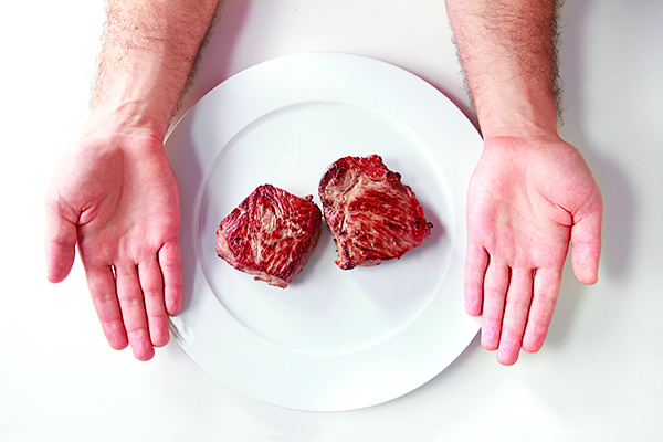 PN Shred protein.jpg