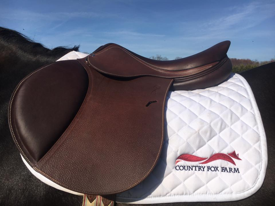 Country Fox Farm is a horse riding company in Virginia,who required their logo to be suitable for both print and embroidery.