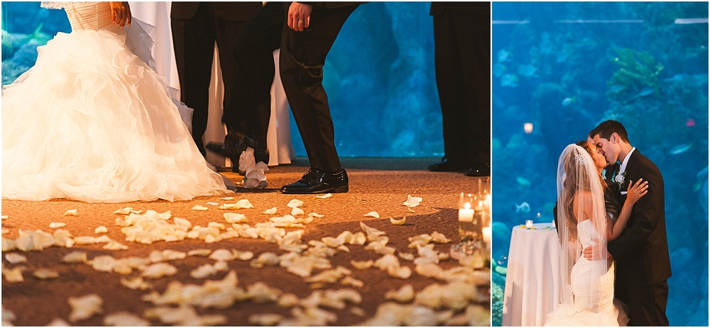 the florida aquarium, tampa wedding photographer, destination wedding
