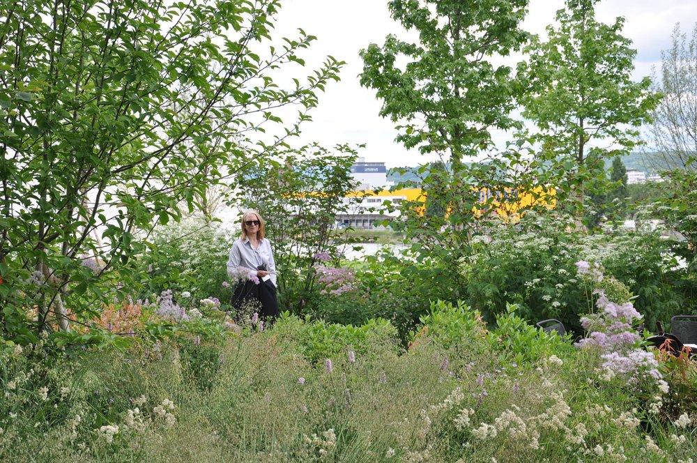 Kathryn Gustafson  on site, June 2017