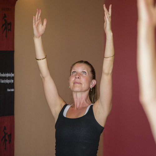 Annandale Green Lotus Yoga Healing Therapeutic Services