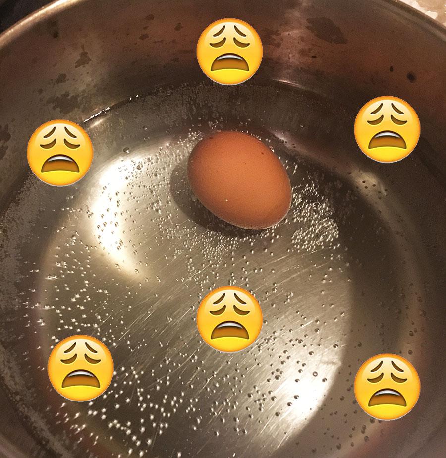 one-egg.jpg