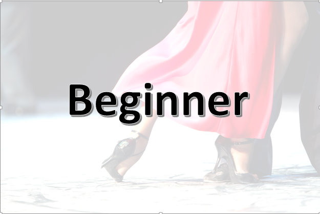 Beginner.png