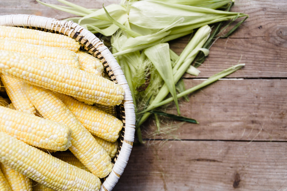 vh corn_baxter miller-6.jpg