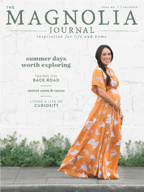 magnolia journal curiosity