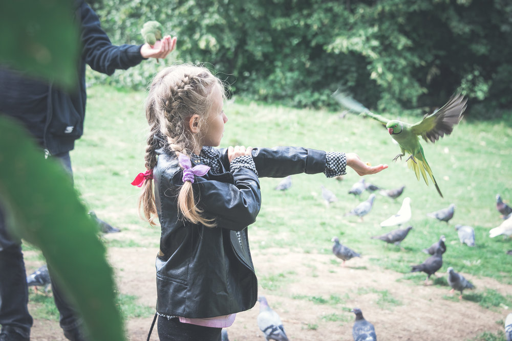 green-parrots-london-lifestyle-portrait