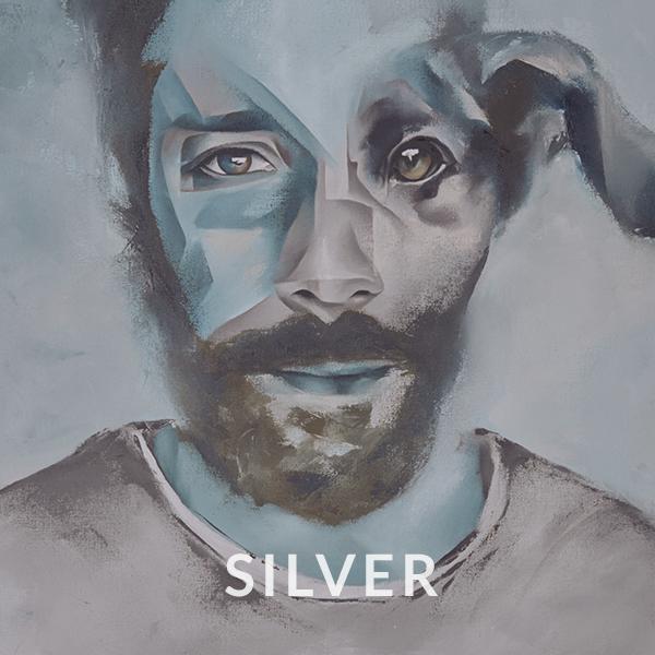 CD/Vinyl Silver