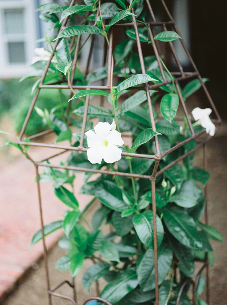 JulietYoungPhotography+Fine+Art+Film+Photographer+Arkansas-8.jpg