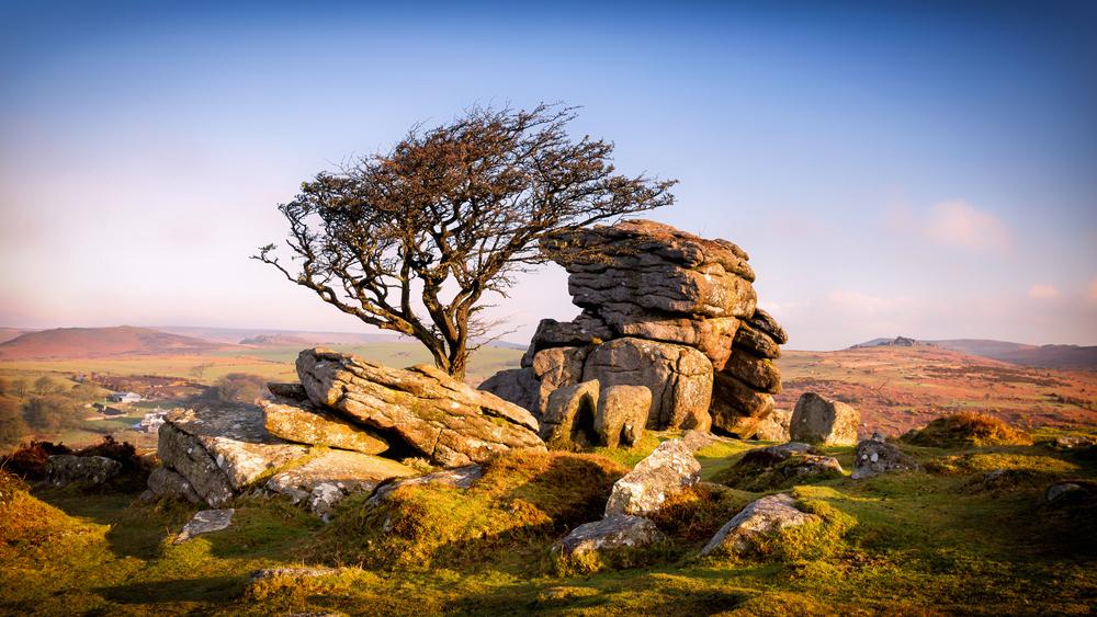 Dartmoor new new 2.jpg