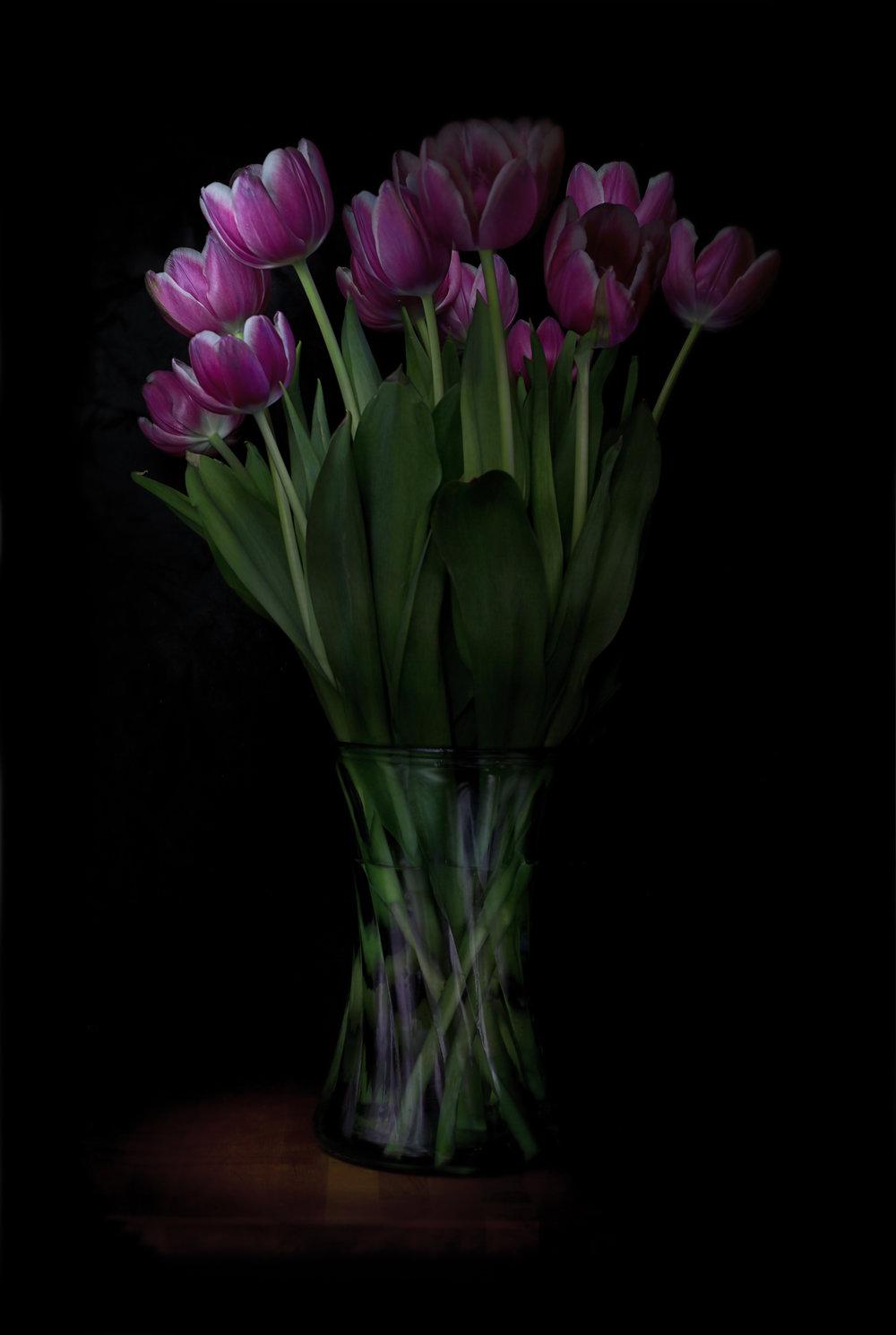 tulips 9.jpg