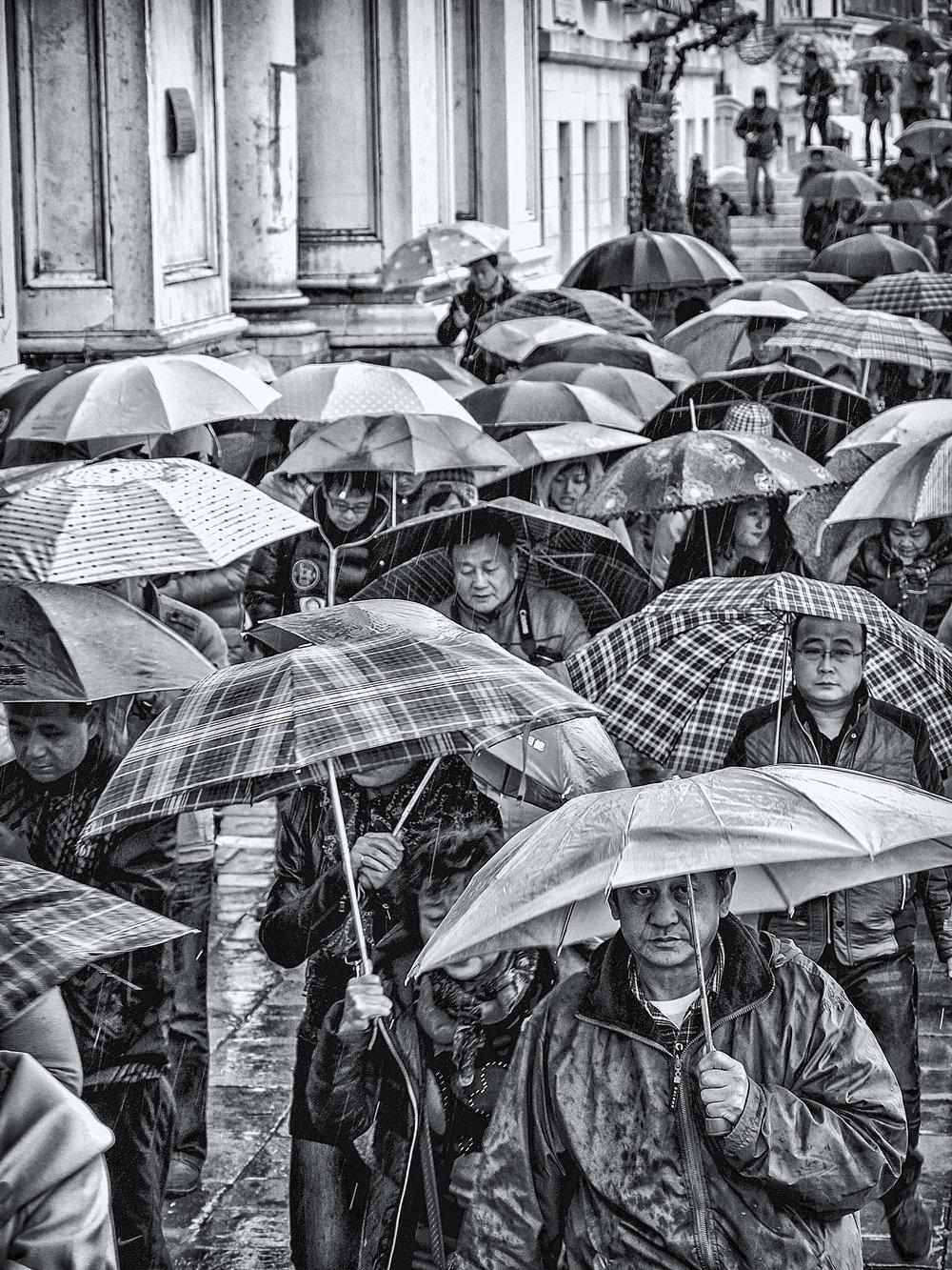 DCSL umbrellas bw.jpg