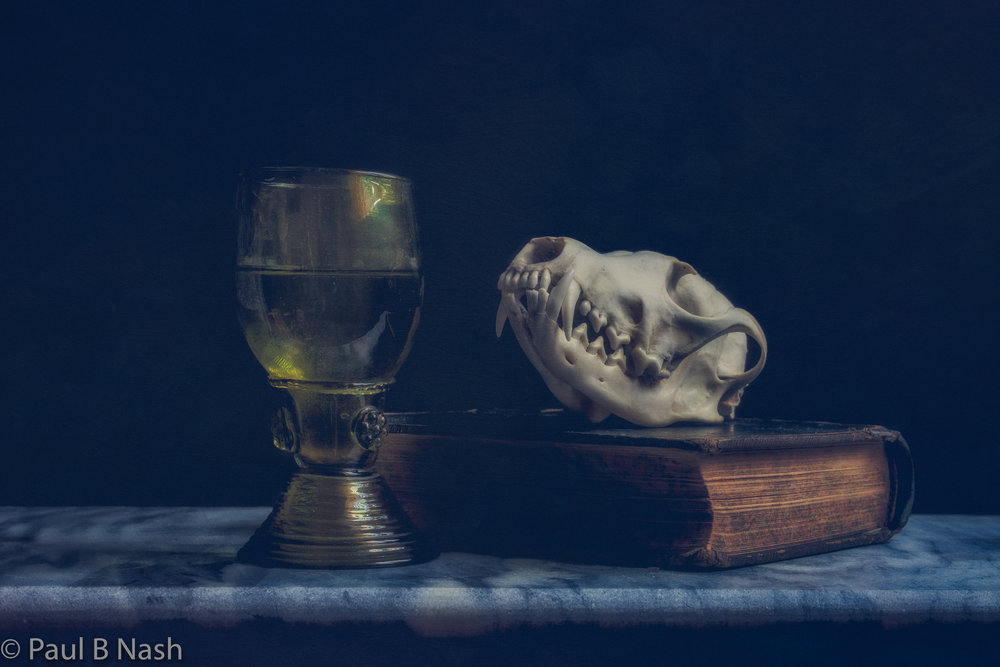 Glass and skull 3 for sell new sell copywright.jpg