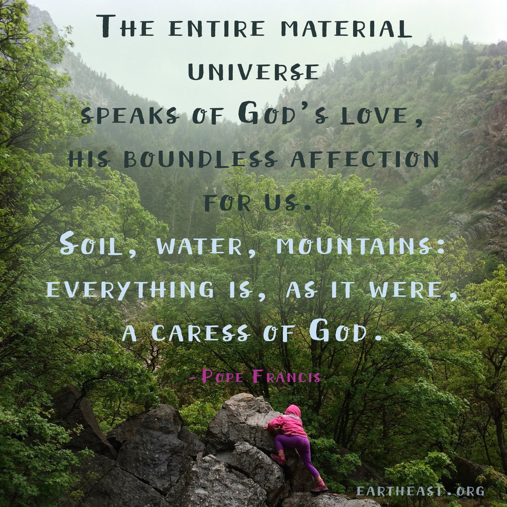 Protect Nature Quotes: Pope Francis: Care For The Earth