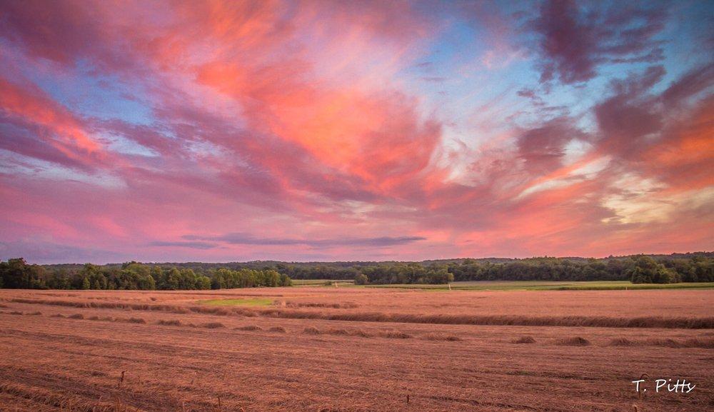 sunrise pitts.jpg
