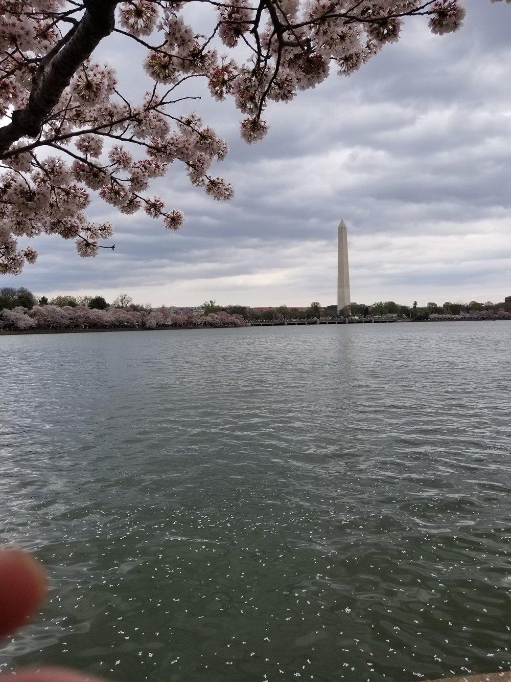 cherries monument.jpg