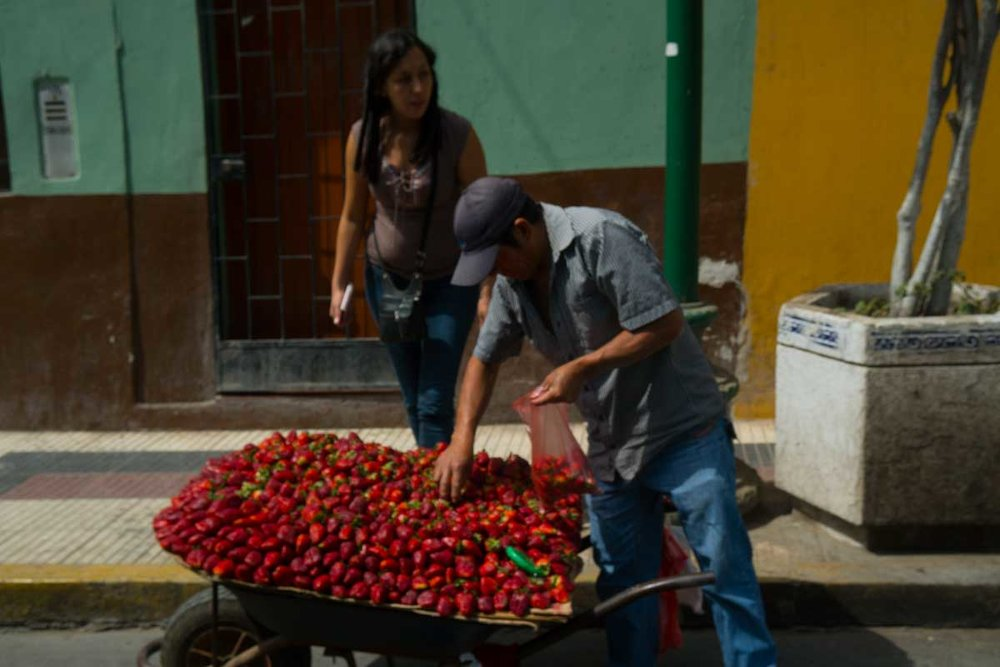 2016-09-02 Chiclayo, Peru-32.jpg