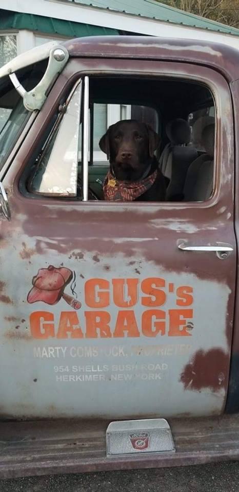 Gus Comstock