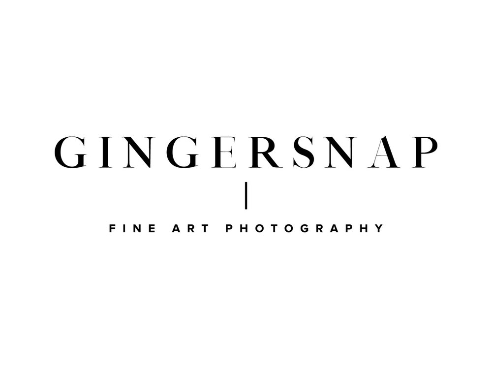 gingersnap-photography-gingersnap-vendor.jpg