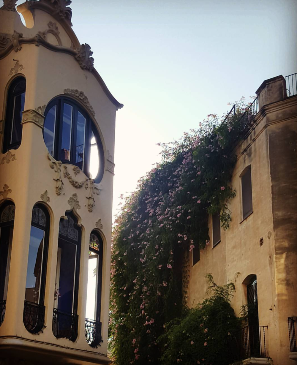 "I stopped in my steps as I saw the sun shine between some old ""Gaudi-esque"" houses, kissing the long flower-clad branches of a majestic 4-story tall tree as I bathed in the peace and quiet of a pedestrian road. I had fallen blindly in love."