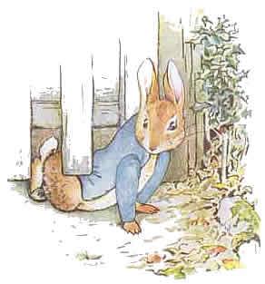 Peter-Rabbit-4.jpg