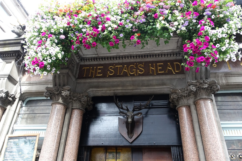 The Stag's Head pub in Dublin