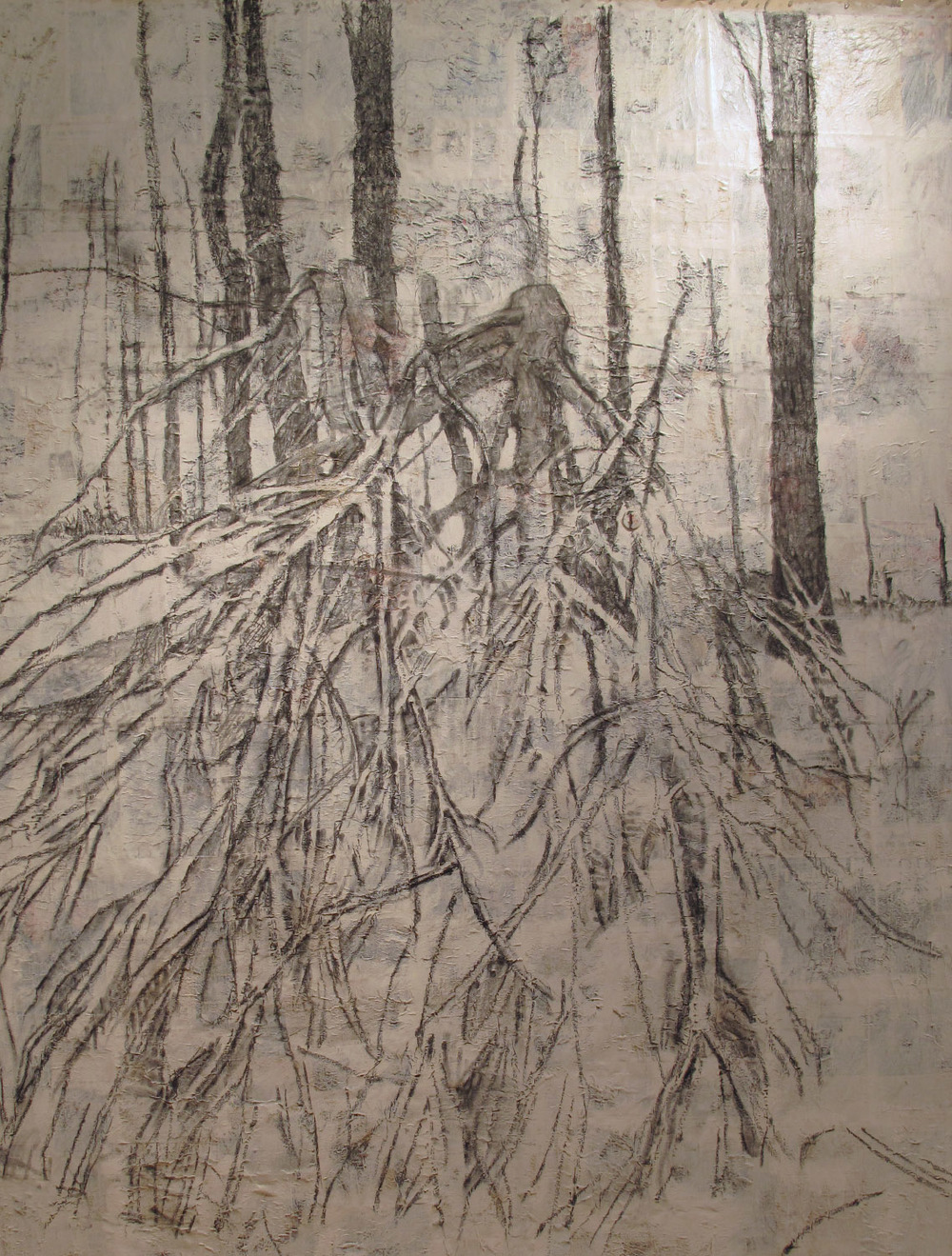 2ah(0), charcoal, gesso, print media collage on canvas, 96x78 in. 2001.jpg