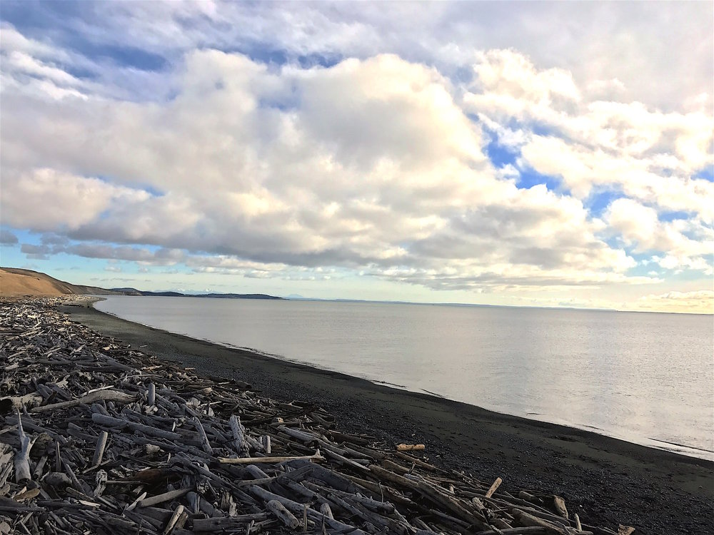 Have the beaches to yourself during San Juan Island's Secret Season