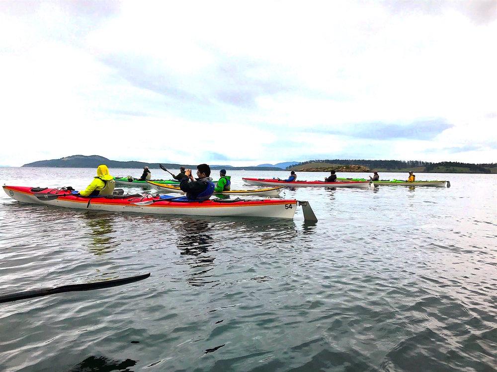 Kayaking the Salish Sea