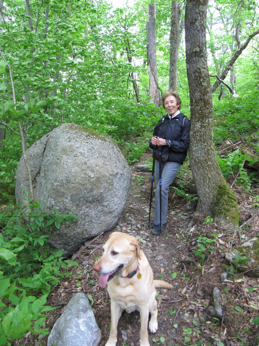 Tad  Ames - hiker dog boulder.jpg
