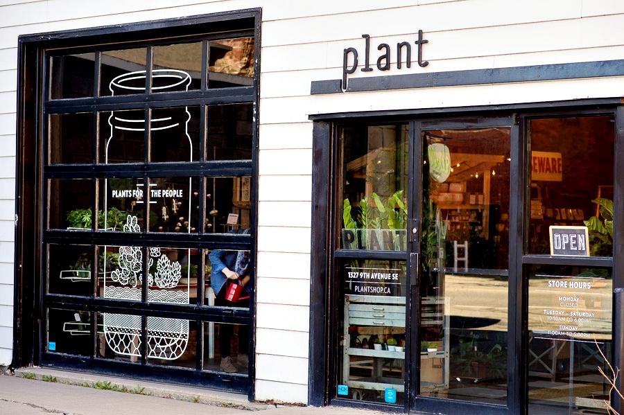 Plant_Terrariums_Inglewood_0001.jpg