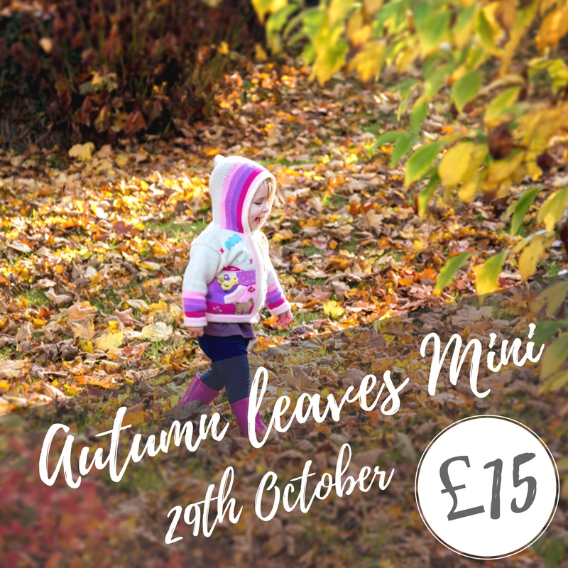 Autumn leaves mini session photoshoot in Ely October 2017.jpg