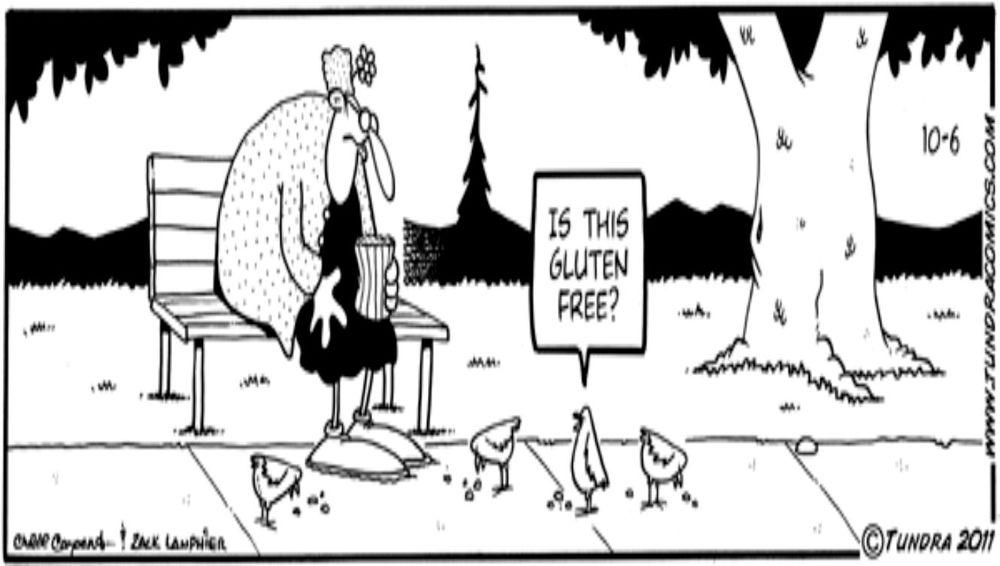 Gluten Free Birds