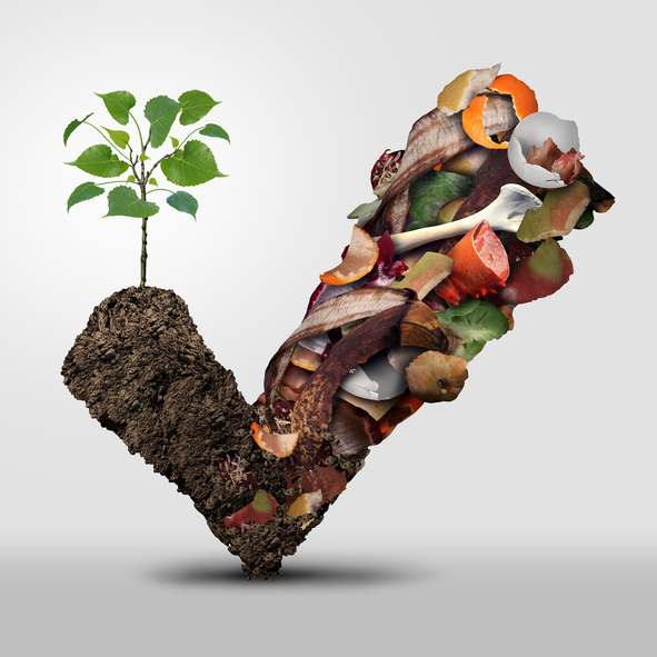 Top tips-to-reduce-food-waste-make-dirt