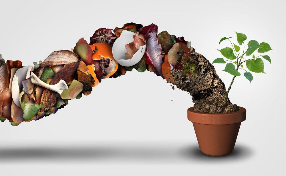 Tips_7_compost.jpg
