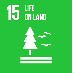 The United Nations Sustainable Development Goal 15, Life on Land, amplifies the importance of the earth for our sustenance and livelihood. This month, Positive Impact is focussing on how the events industry can protect, restore and promote sustainable use of terrestrial ecosystems, ultimately combating climate change. -