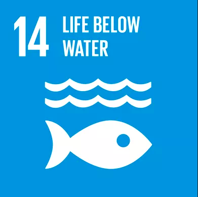 The United Nations Sustainable Development Goal 14, Life below Water, promotes the importance marine conservation and healthy marine ecosystems. This month, Positive Impact is focussing on how the events industry can protect, conserve and promote sustainable use of marine resources. -