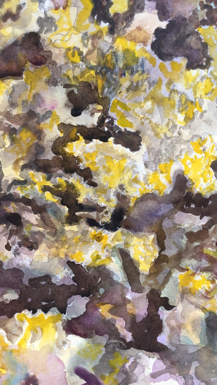 """Abstracted Lichen"""