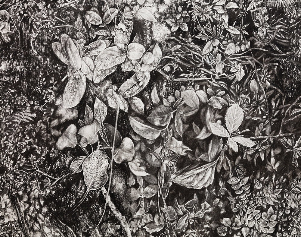 "Detail of ""Florilegium"""