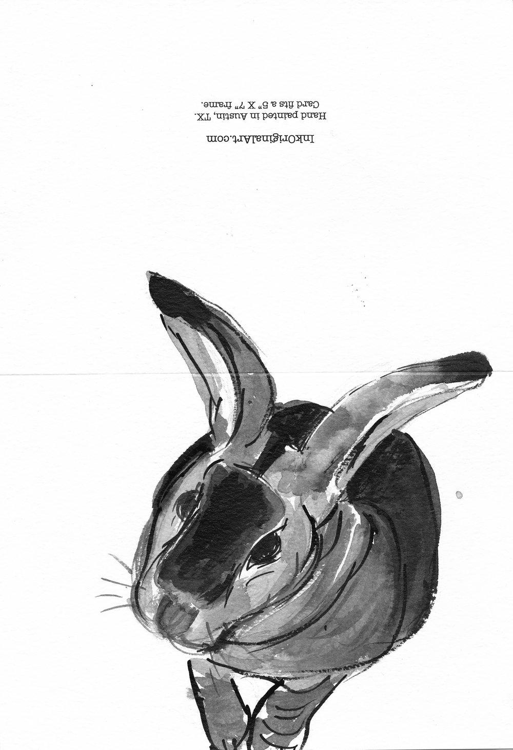 bw-bunny-tall3.jpg