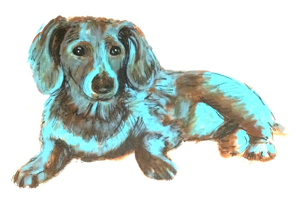 A painting of Bentley the Dachshund done with acrylic paint and pen and ink.