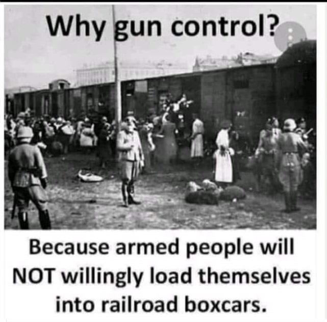 gun control meme.jpg