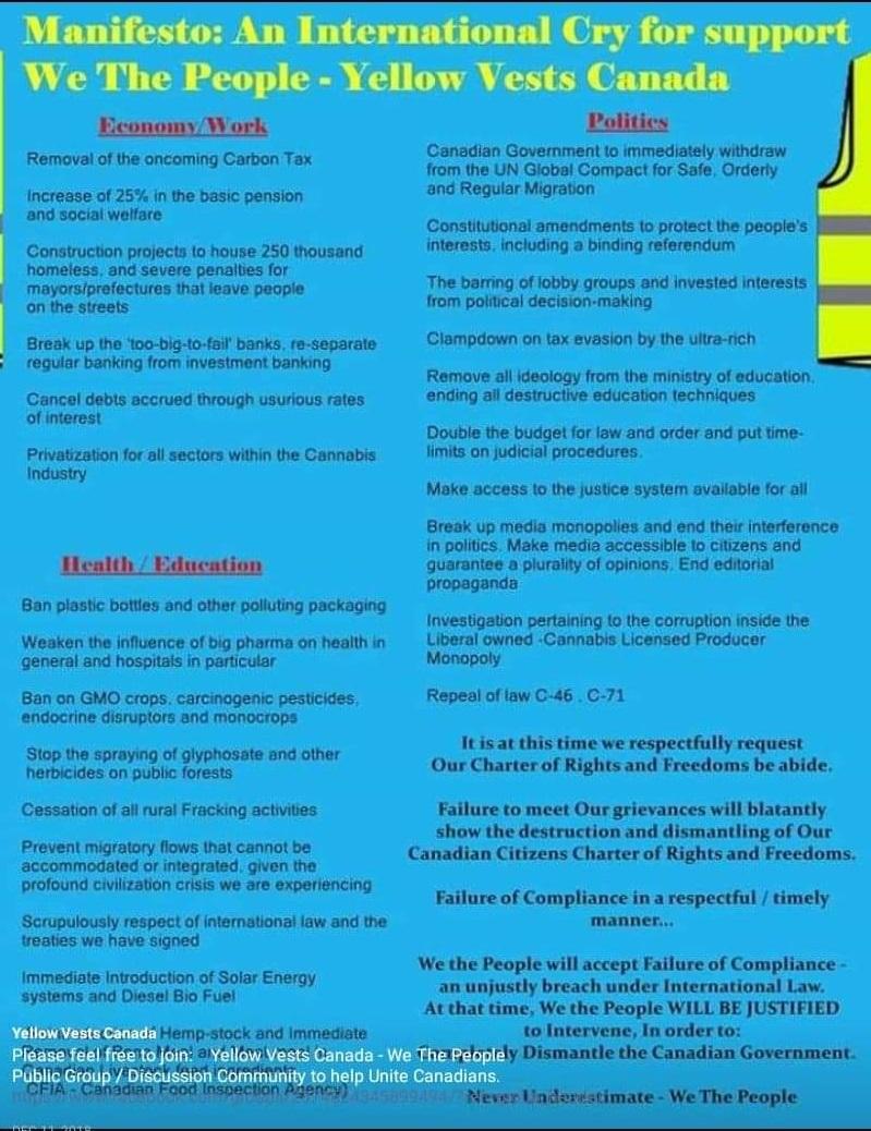 Yellow vest manifesto.jpg