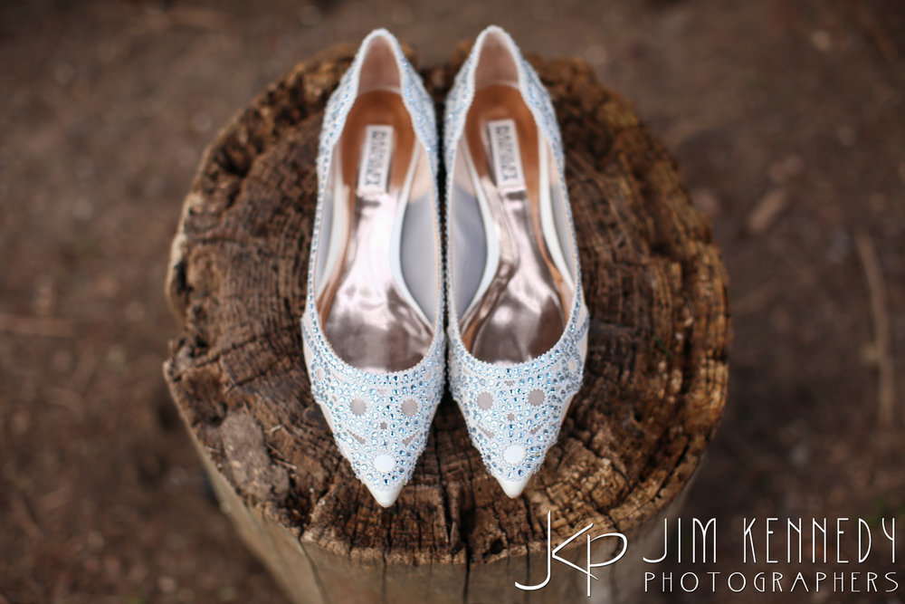 jim_kennedy_photographers_highland_springs_wedding_caitlyn_0003.jpg