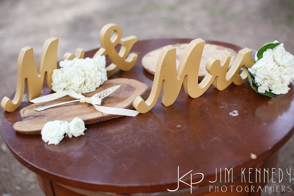 jim_kennedy_photographers_highland_springs_wedding_caitlyn_0097.jpg