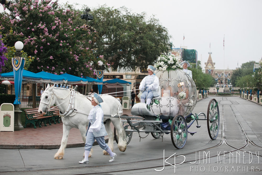 disney_wedding_aug_31_2016_0932.jpg