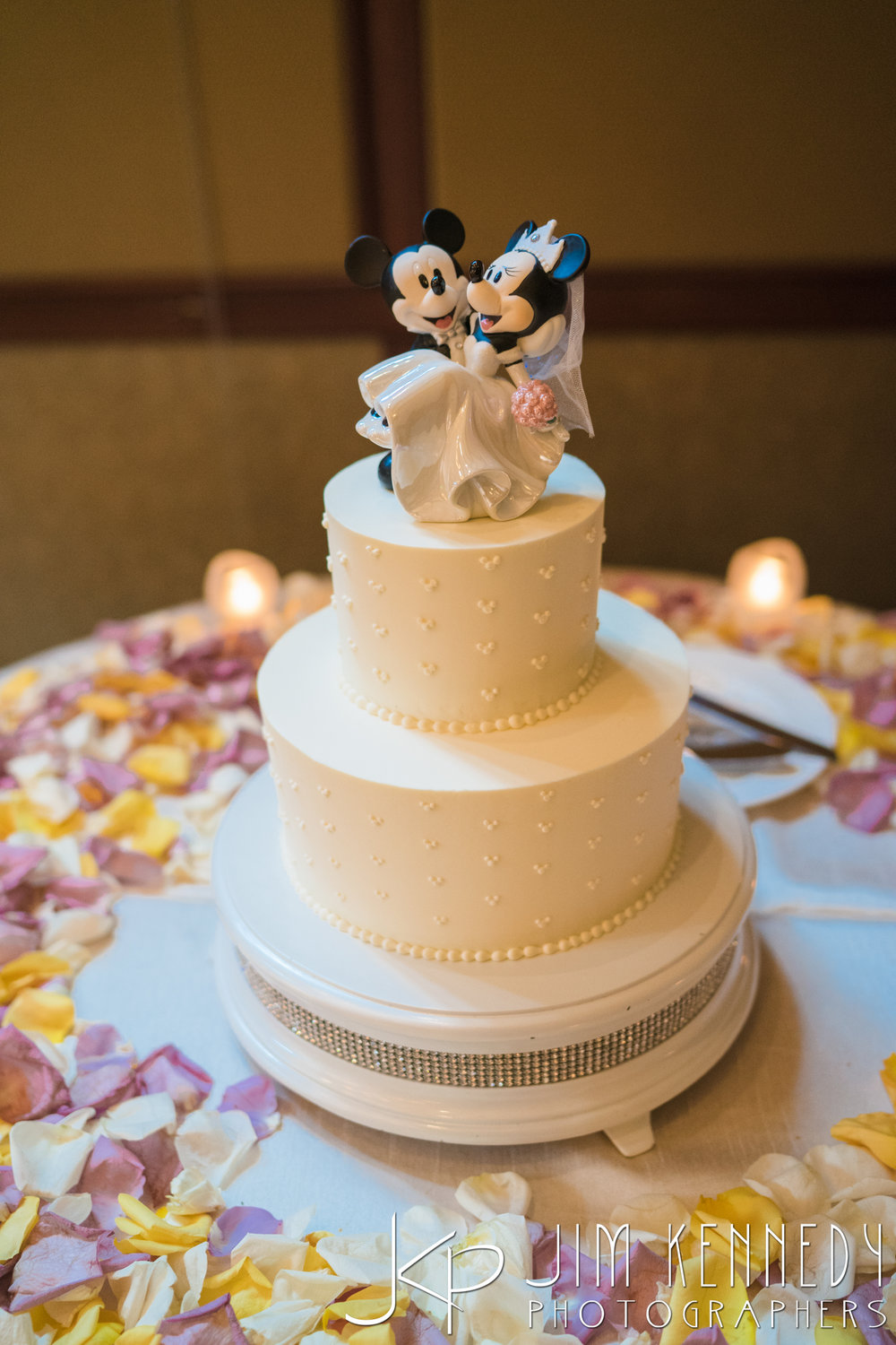 disney_wedding_aug_31_2016_2262.jpg