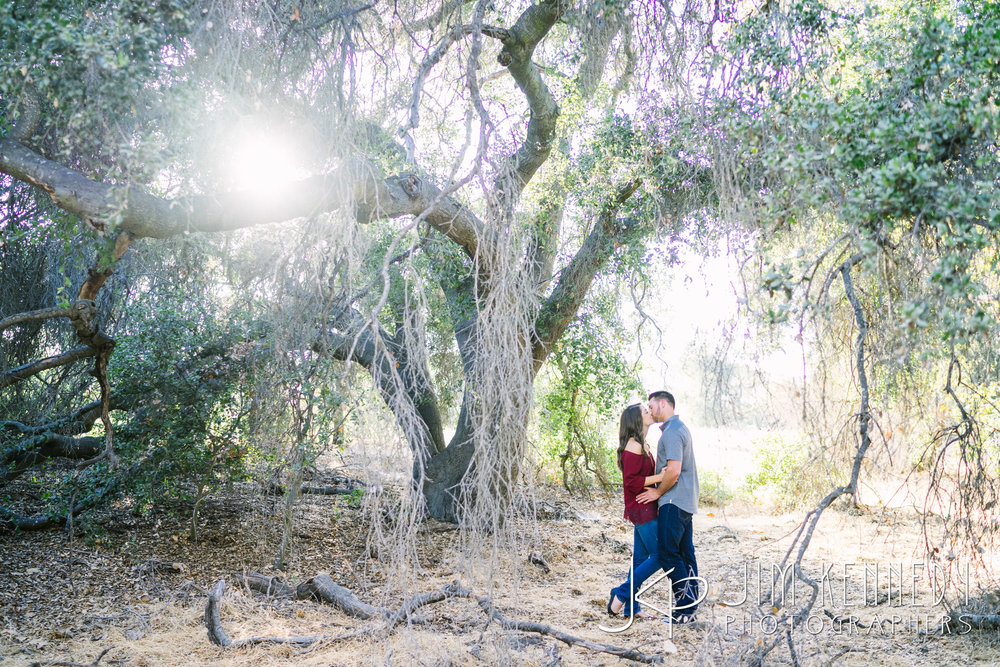 thomas-riley-wilderness-park-engagement-02.JPG