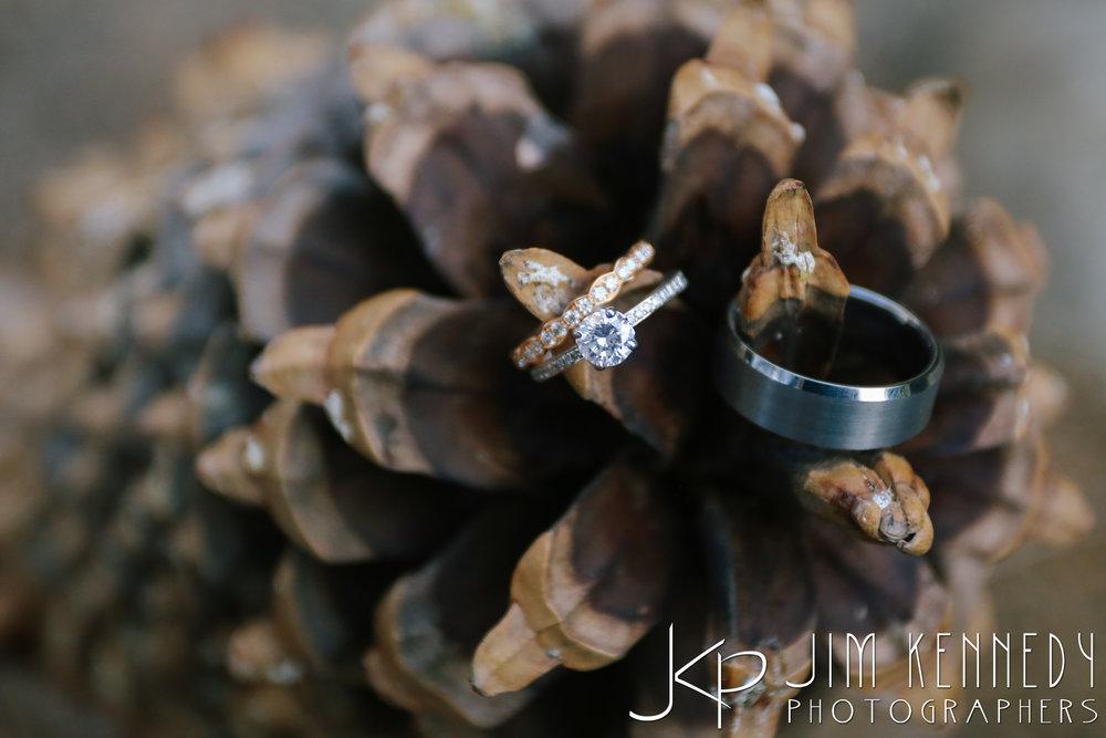 Rancho-Santa-Ana-Botanic-Garden-Wedding-0001.JPG